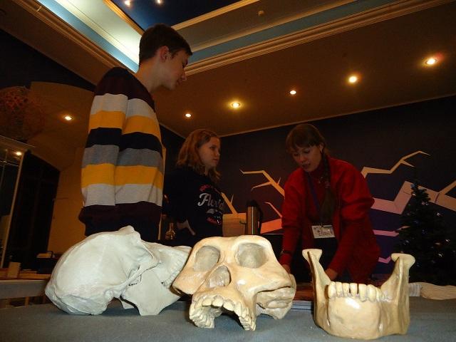 Интерактивная программа в рамках выставки 17 черепов и зуб