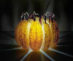 galvanicheskie-frukty-1